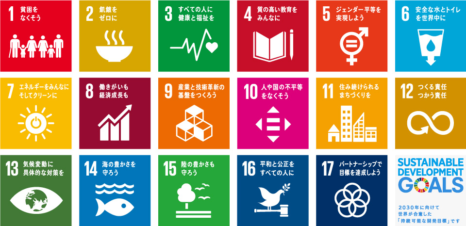 Image result for sdgs 日本語